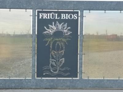 cancello FRIUL BIOS
