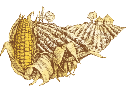 Agricoltura Omeodinamica